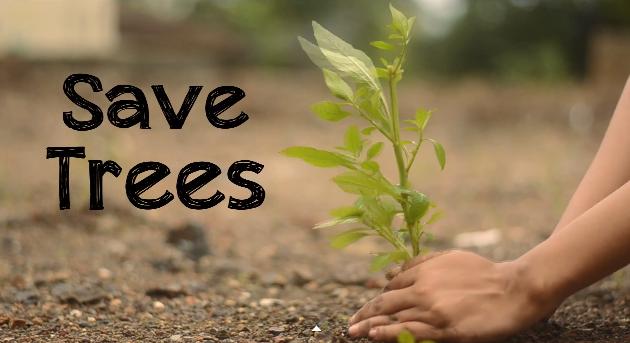 Как да спасим горите и дърветата